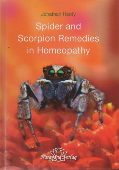 Spider and Scorpion Remedies