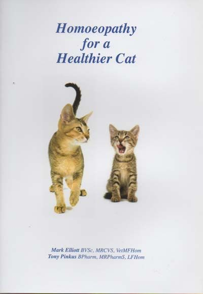 Homeopathy For A Healthier Cat