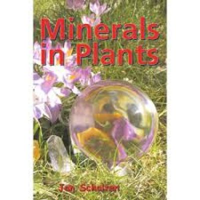 Minerals In Plants
