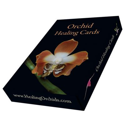 Orchid Essence Photo Cards