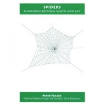 Spiders - Suspended Between Earth  & Sky