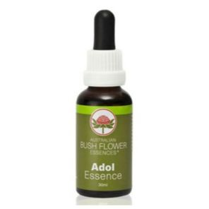 Adolesence (Bush Flower Combination) 30ml