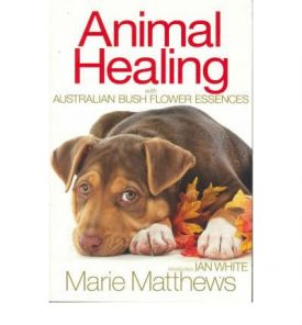 Animal Healing With Aus. Bush Essences