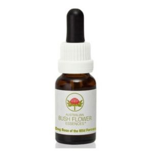 Dog Rose Of The Wild Forces 15ml Australian Bush Essence