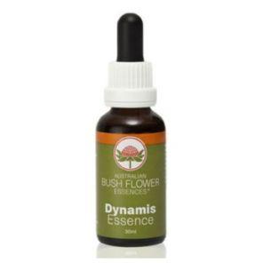 Dynamis (Bush Flower Combination) 30ml