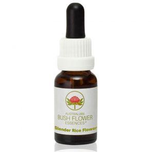 Slender Rice Flower 15ml Australian Bush Essence